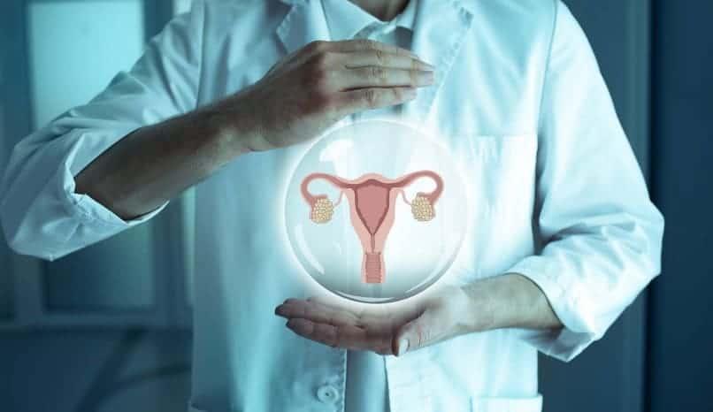 Grlić maternice